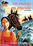 Un cheval en Irlande